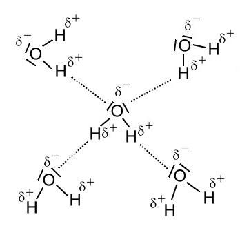 Wasserstoffbrücken