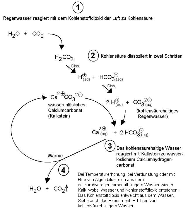 Der natürliche Kalkkreislauf - Chemiezauber.de